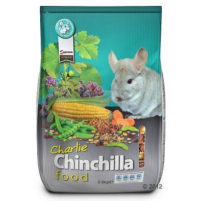 Charlie pour chinchilla