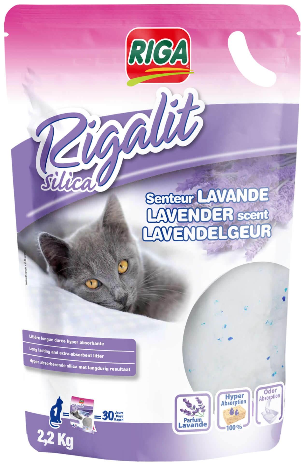 Rigalit Lavande