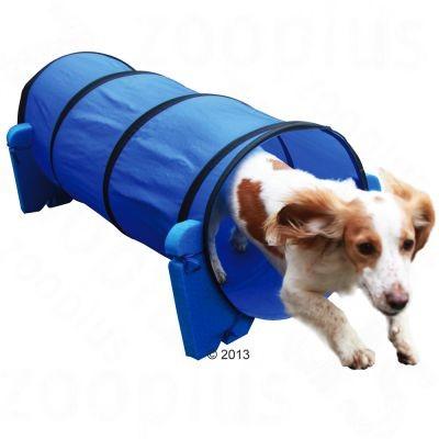 Tunnel Agility d'intérieur pour chien
