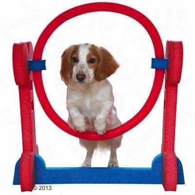 Cerceau Agility d'intérieur pour chien