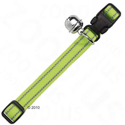 Collier Flashlight pour chat