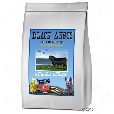 Black Angus Adult