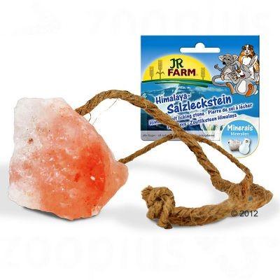Pierre de sel Himalaya pour rongeur