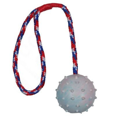 Balle en caoutchouc avec corde pour chien
