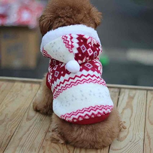Pull de Noël pour chien