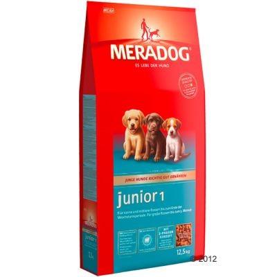 Meradog Junior 1