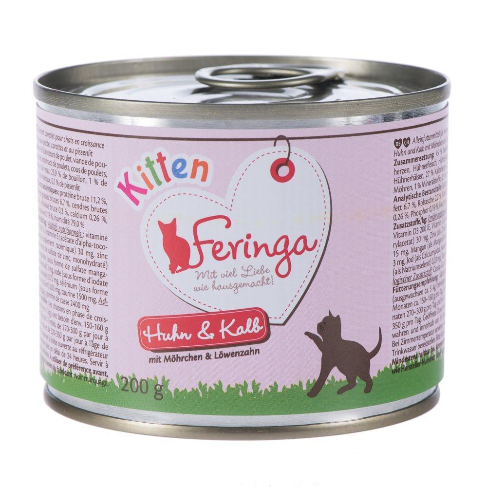 Feringa Kitten pour chaton