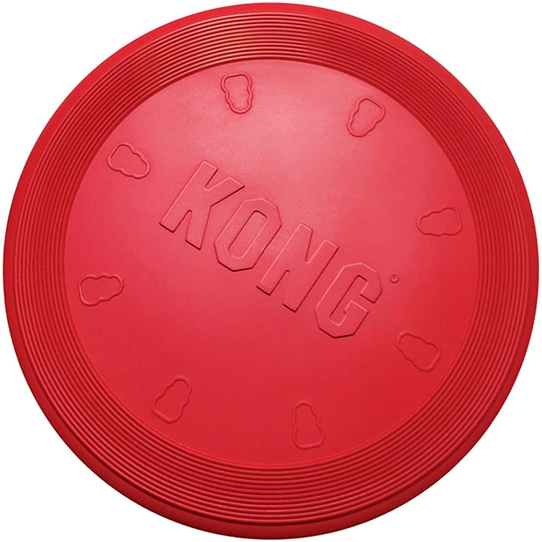Frisbee Flyer