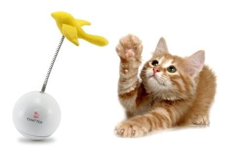 Jouet Chatter Frolicat