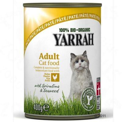 Yarrah Cat Dinner Bio