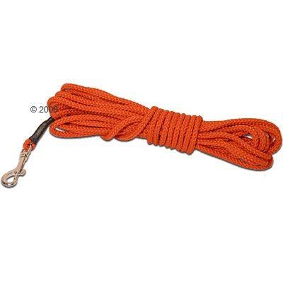 Longe Heim orange pour chien