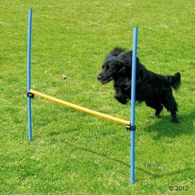 Haie Agility pour chien Fun & Sport
