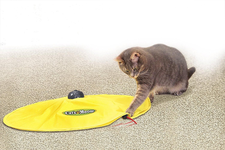 Jeu tapis de souris pour chat