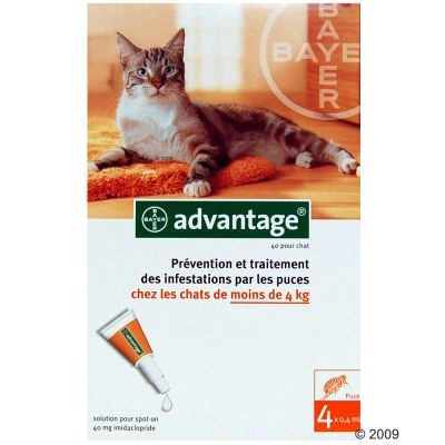 Antiparasitaire Advantage pour chat