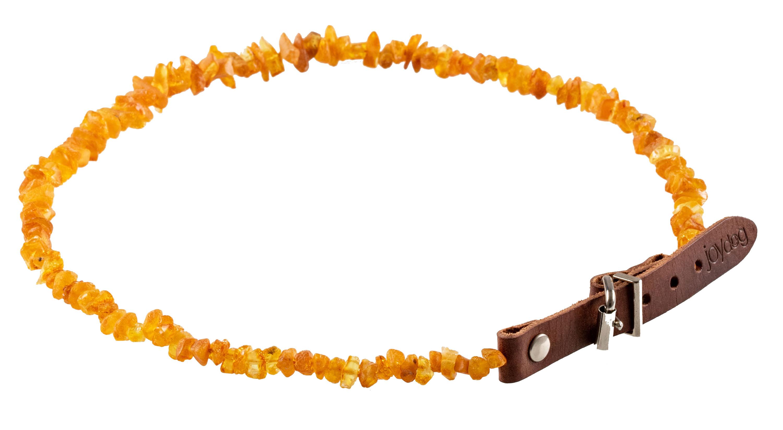 Collier ambre - Anti-tiques et puces