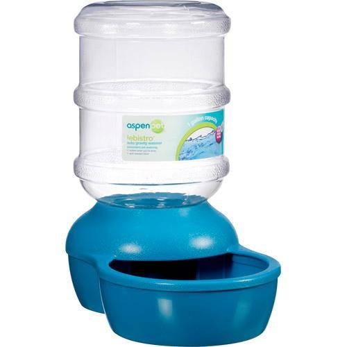 Réservoir d'eau pour chiens