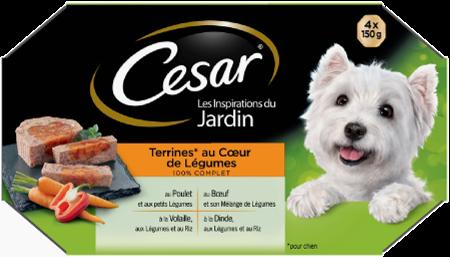 LES INSPIRATIONS DU JARDIN - AU COEUR DE LEGUMES