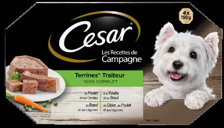 LES RECETTES DE CAMPAGNE – TRAITEUR 4 x 150g 4 variétés