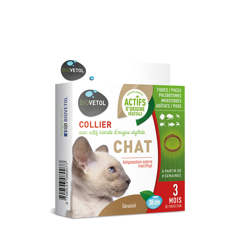 Collier insectifuge pour chat
