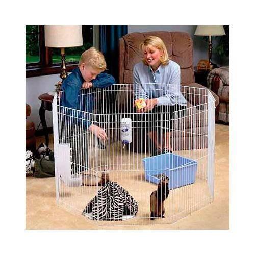 Enclos pour Furets et Petits Animaux