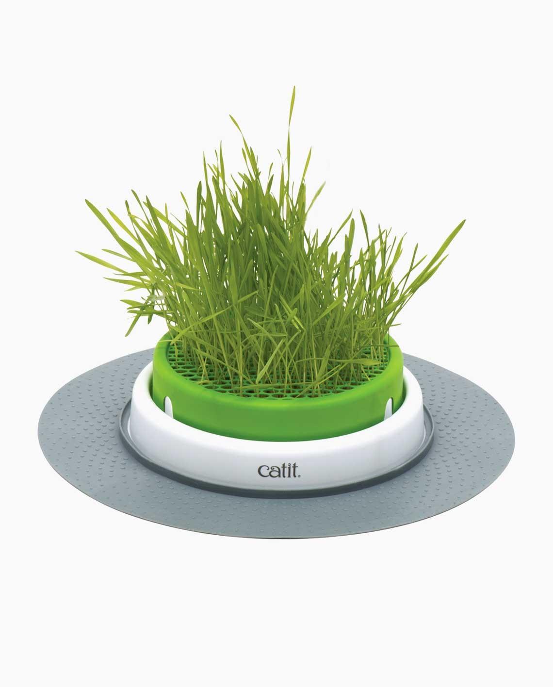 Sense 2.0 Grass Planter