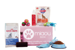 Coffret Miaoubox