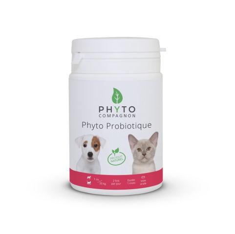 Phyto Probiotique