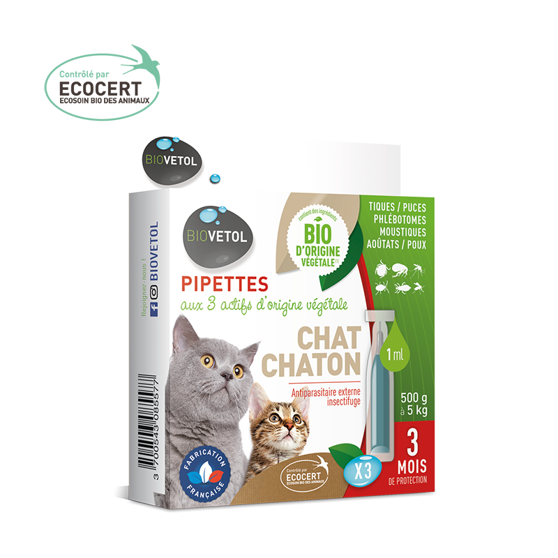 Pipette insectifuges pour chat et chaton