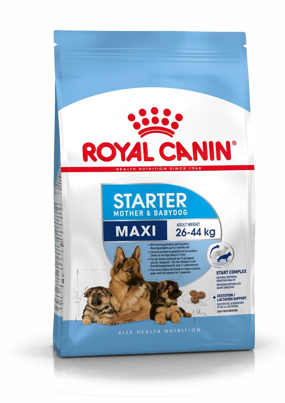 Maxi Starter Mother & Babydog