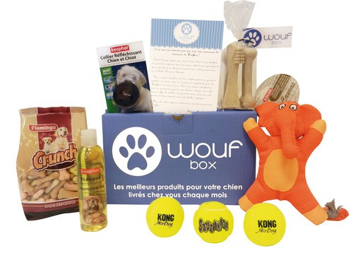 jouets ducatifs pour chien avis meilleur prix test conso animo. Black Bedroom Furniture Sets. Home Design Ideas