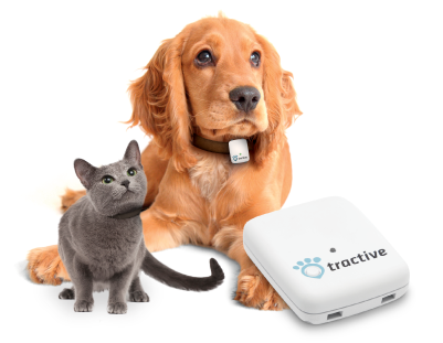 GPS pour animaux Tractive