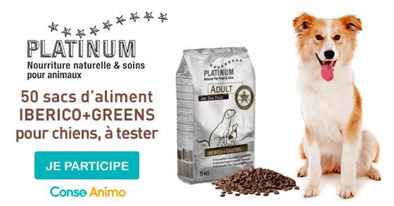 testez gratuitement iberico greens de platinum pour votre chien. Black Bedroom Furniture Sets. Home Design Ideas